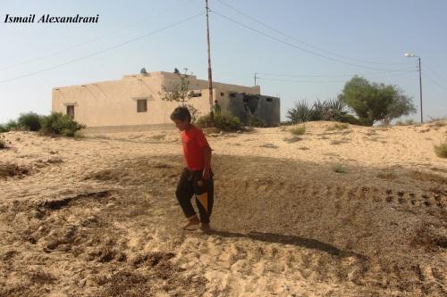 """آثار الدبابة التي قصفت مسجد """"اللفيتات"""" يوم الجمعة 13 سبتمبر - التقطت الأحد 15 سبتمبر 2013"""